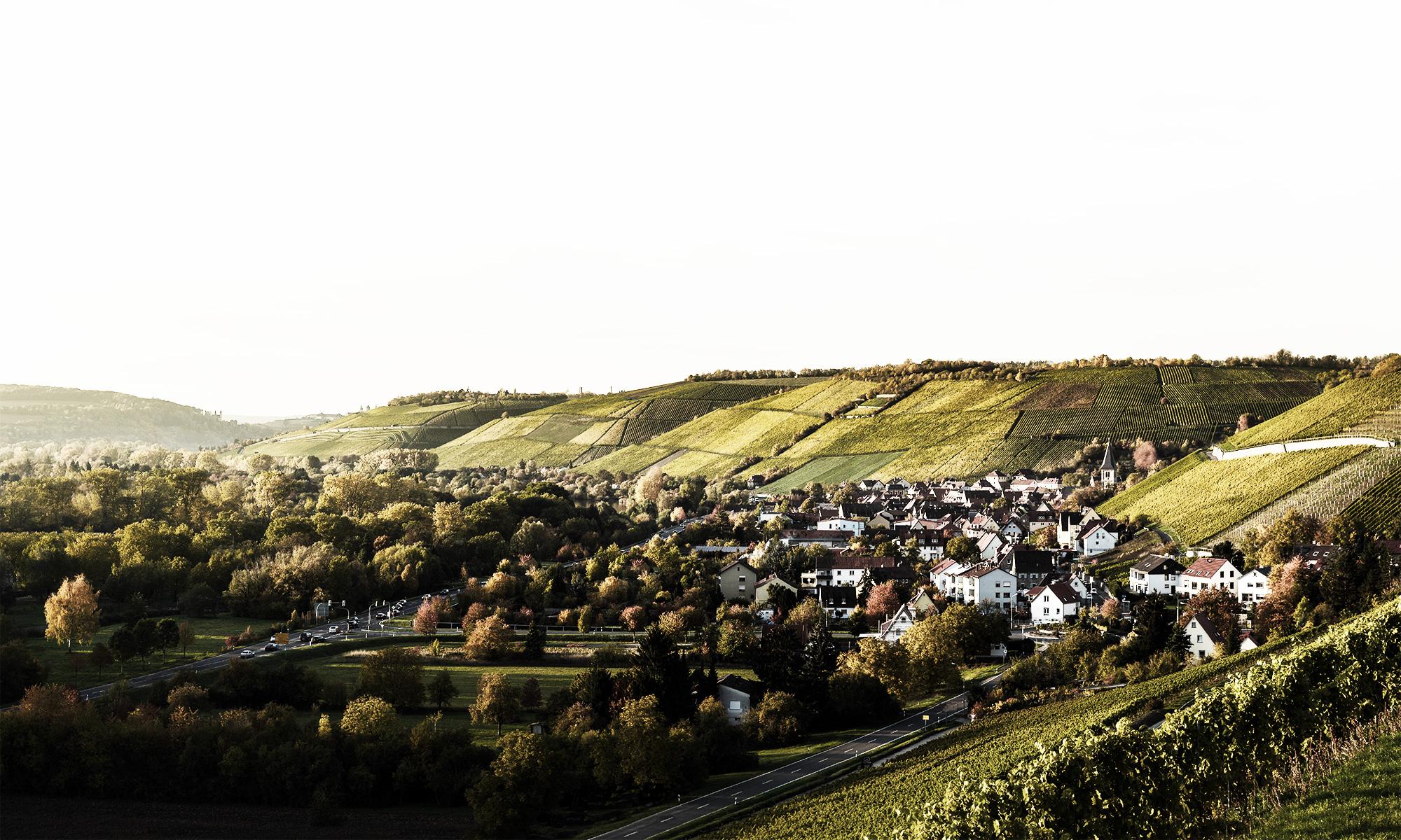 Weingut Martin Göbel in Randersacker